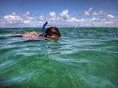 Snorkeler In Kauai Hawaii