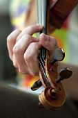 picture of violin  - Close up on a musician playing violin in a band - JPG