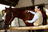 foto of grooming  - Young woman grooming and caressing brown horse outdoors - JPG