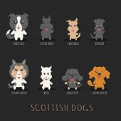 picture of scottish terrier  - Set of scottish dogs eps10 vector format - JPG