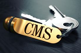 foto of social system  - Keys and Golden Keyring with the Word CMS  - JPG
