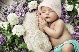 stock photo of sweet dreams  - Cute little newborn baby - JPG