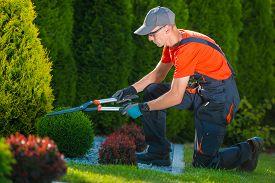 picture of garden-art  - Professional Gardener at Work - JPG