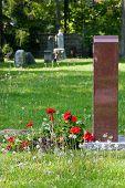 Flowers At Gravesite