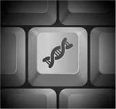 DNA Icon on Computer Keyboard Original Illustration