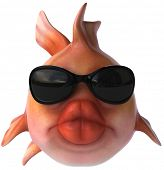 Red fish with sunglasses