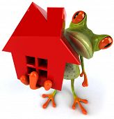 Frog and house