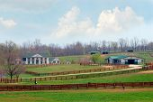 Kentucky Horse Ranch