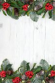Winter and christmas abstract background border with traditional flora of holly, mistletoe, snow cov poster