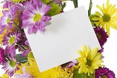 Fresh Spring Flower Bouquet With Note Card