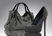 image of high heels  - woman bag with shoe  - JPG
