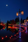 stock photo of christmas lights  - Christmas lights festival and celebration at vandusen gardens - JPG