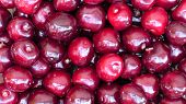 Close Up Of Pile Of Ripe Cherries. Large Collection Of Fresh Red Cherries. Ripe Cherries Background. poster