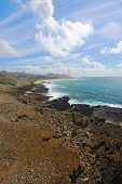 View Of Sandy Beach Park From The Halona Blowhole In Hawaii Vertical