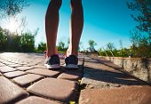 Female Feet In Sneakers. The Woman Before Jogging. Legs In Athletic Shoes. Morning Running. Active L poster