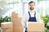Serious confident handsome bearded moving company employee in overalls carrying heavy cardboard box  poster