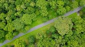 Aerial photo country road between avenue of trees green forest rural countryside poster