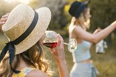 Group Of Girls Friends Making Picnic Outdoor. They Have Fun And Drink Wine poster