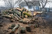 Sawn Old Logs In A Rustic Courtyard. Stack Of Logs At A Sawmill. Stack Firewood. Logs For The Firepl poster