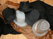 Fedora Collection