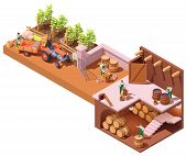 Vector Isometric Winery And Wine Making Process. Wine Makers On Grapes Harvesting On Vineyard, Crush poster