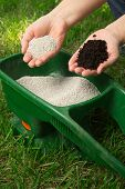 stock photo of fertilizer  - Preparing to fertilize lawn in back yard in spring time
