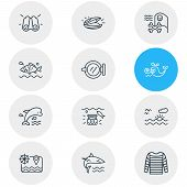 Illustration Of 12 Marine Icons Line Style. Editable Set Of Ship Window, Mussel, Sunset In The Sea A poster