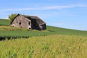 Dilapidated Farm House