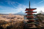 Fujiyoshida, Japan At Chureito Pagoda And Mt. Fuji In The Spring With Cherry Blossoms Full Bloom Dur poster