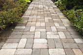 Garden Brick Paver Path Walkway