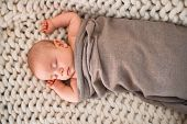 Adorable baby lying down on the sofa over blanket at home. Newborn relaxing and sleeping comfortable poster