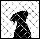 stock photo of spayed  - Illustration of a dog silhouette behind a fence - JPG