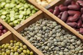 stock photo of legume  - legumes in box abstract with a selective focus on French green lentils - JPG