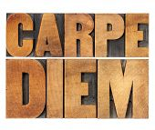 Carpe Diem  - enjoy life before it is too late, existential cautionary Latin phrase by Horace - isol