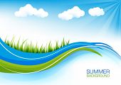 Elegant spring or summer background with grass and blue sky