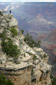 Man Standing On Cliff In Grand Canyon National Park