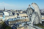 Paris wit Gargoyle architectural fragment in foreground, taken from the roof of Cathedral Notre Dame