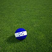 3D-Rendering von einem honduranischen Soccerball lying on grass