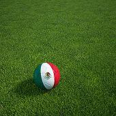 3D Darstellung einer mexikanischen Soccerball lying on grass