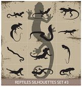 Big collection of vector reptiles silhouettes