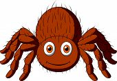 Cute tarantula spider cartoon