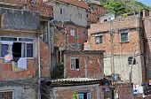 Houses In Favela Rocinha.