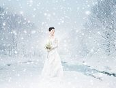 image of terrific  - Young and beautiful bride with the flower bouquet in winter forest - JPG