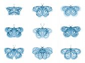 Virtual Fractal Butterflies