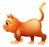 Illustration of a side view of a fat cat on a white background