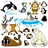 picture of caribou  - set with cartoon arctic animals isolated on white background - JPG