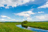 Peaceful Summer Rural Landscape