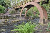 foto of arch foot  - Wooden Foot Bridge Over Water Creek at Crystal Springs Garden in Springtime - JPG