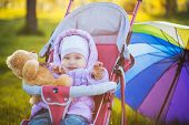 funny Baby is sitting in stroller on nature