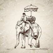 Elephant with man and umbrella Hand drawn illustration